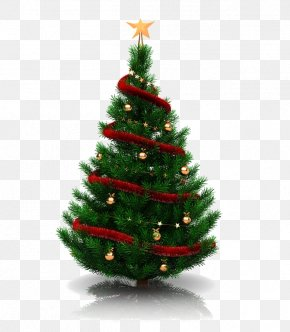 Green Christmas Tree - Christmas Tree Christmas Decoration Christmas Eve Christmas Ornament PNG