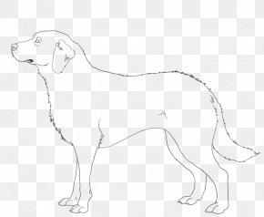 Dog - Dog Breed Companion Dog Retriever Line Art PNG
