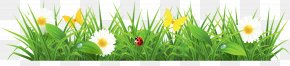 Grass Ground With Flowers Clipart Picture - Euclidean Vector Spring Pixabay PNG