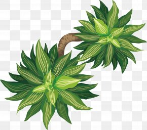 Fortune Tree Potted Plants - Tree Euclidean Vector Plant Flowerpot PNG