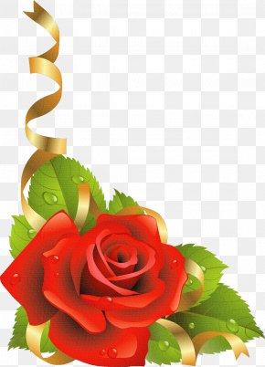 Flor - Love Heart Symbol PNG