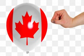 Canadian Flag Printed Balloons - 150th Anniversary Of Canada Flag Of Canada Maple Leaf PNG