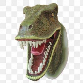 Dinosaur - Lake Murray Tyrannosaurus Dinosaur Head PNG
