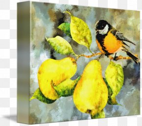 Painting - Watercolor Painting Still Life Art PNG
