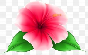 Flower Clip Art - Flower Desktop Wallpaper Clip Art PNG