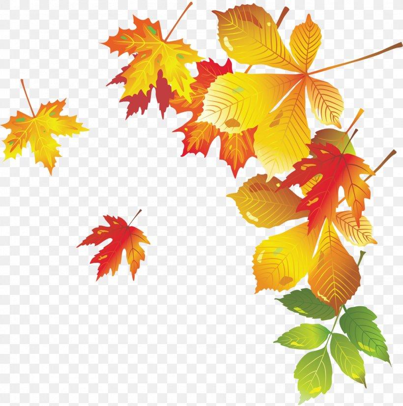 Autumn Leaf, PNG, 1489x1500px, Autumn, Autumn Leaf Color, Branch, Flower, Flowering Plant Download Free