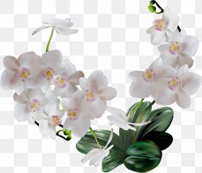 Artificial Flower Orchid - Artificial Flower PNG