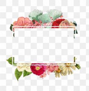 Flowers Border - Flower Paper Logo PNG