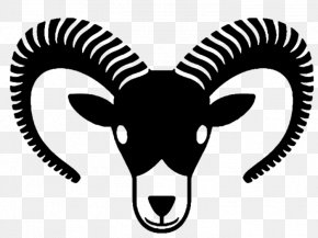 Goat - Mountain Goat Drawing Ahuntz PNG