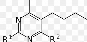 Fungi - Phenyl Group Chemical Compound Isotope Substituent Molecule PNG
