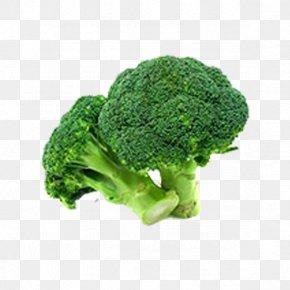 Broccoli - Broccoli Vegetable Food Variety PNG