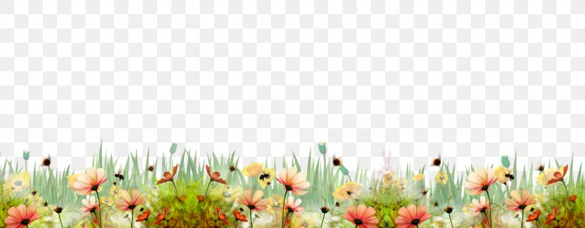 Flower Shrub, PNG, 1920x750px, Floral Design, Drawing, Flora, Floristry, Flower Download Free