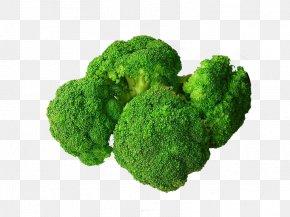 Broccoli - Broccoli Food Vegetable Eating Nutrition PNG