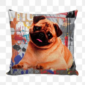 American Eskimo Dog - Pug Dog Breed Throw Pillows Toy Dog PNG