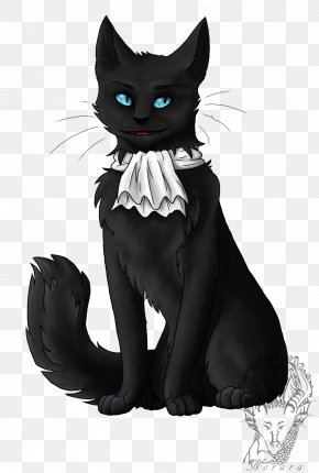 Black Cat - Bombay Cat Kitten Whiskers Domestic Short-haired Cat Black Cat PNG