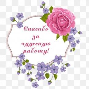 Flower - Wedding Invitation Picture Frames Flower Purple Clip Art PNG