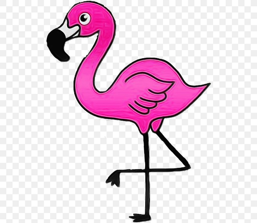 Flamingo Cartoon Images