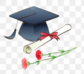 Bachelor Of Cap And Roses - Graduation Ceremony Cartoon Doctorate PNG