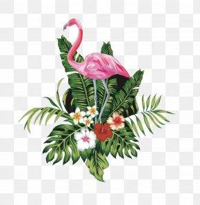 Pink Flamingo - Bird Flamingo PNG