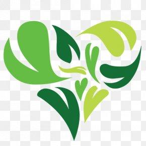 Plant Botany - Green Leaf Logo PNG