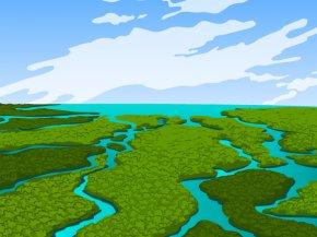 Wetland Cliparts - Everglades Pantanal Wetland Ecology Clip Art PNG