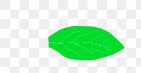 Cap Plant - Green Leaf Logo Plant Cap PNG