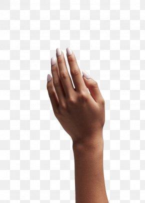 Nail Polish - Hand Arm Nail Polish Finger PNG