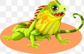 Lizard - Green Iguana Lizard Reptile Chameleons Clip Art PNG