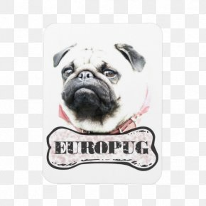 Puppy - Pug Puppy Dog Breed Samsung Galaxy S5 IPhone 6 PNG