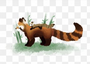 Vector Panda - Red Panda Giant Panda Bear PNG