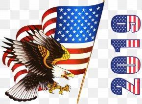 Hawk Falconiformes - Veterans Day Usa Flag PNG