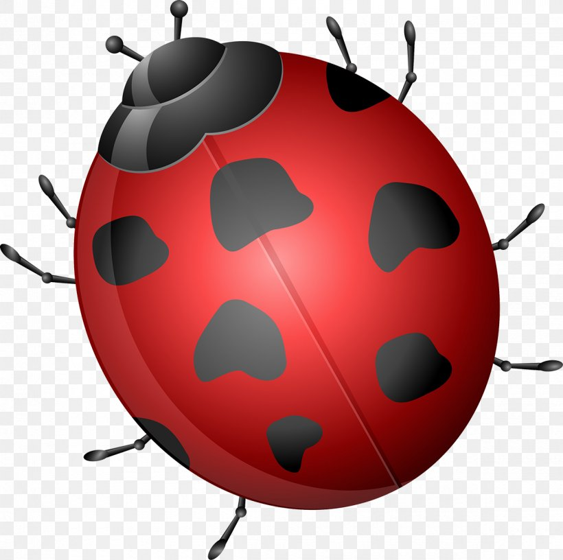 Beetle Clip Art, PNG, 1200x1195px, Beetle, Cartoon, Graphic Designer, Insect, Invertebrate Download Free