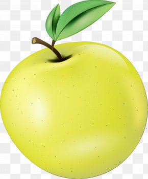 Tree Granny Smith - Fruit Green Leaf Plant Apple PNG