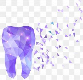 Flat Teeth - Human Tooth Dentistry Polygon PNG
