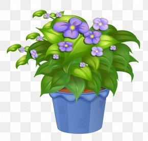 Flower Pot - Ornamental Plant Houseplant Flowerpot PNG