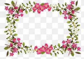 Flowers Borders Clipart - Floral Design Cut Flowers Flower Bouquet Gift PNG