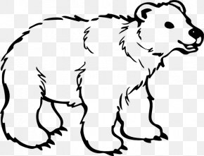 Polar Bear Clip Art - Polar Bear American Black Bear Drawing Clip Art PNG
