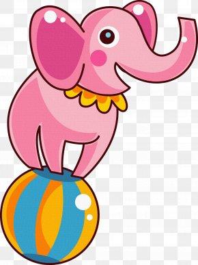 Circus - Circus Cartoon Indian Elephant Clip Art PNG