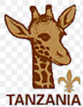 Swaziland Boy Scouts Association - Tanzania Scouts Association Scouting The Scout Association Scout Motto Boy Scouts Of America PNG