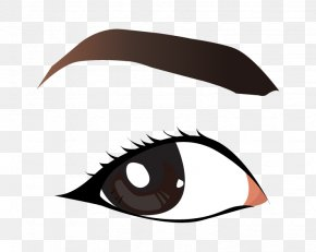 Vector Eye Brows - Eyebrow Clip Art PNG