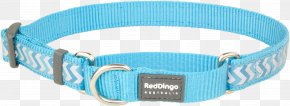Dog Collar - Turquoise Martingale Dog Collar Dingo PNG