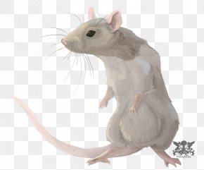 Rat - Rat Chinese Zodiac Astrological Sign Horoscope PNG