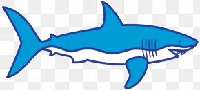 Shark Drawing Clip Art - Clip Art Shark Finning Dorsal Fin PNG