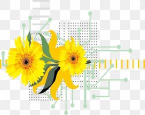Fresh Lemon Vector Image - Common Sunflower PNG