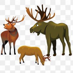 Hand-painted Elk Cartoon Vector Material - Reindeer Elk Moose Red Deer PNG