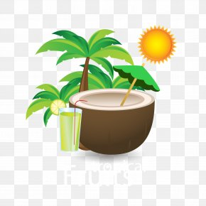 Summer Coconut Drink Material - Coconut Download PNG