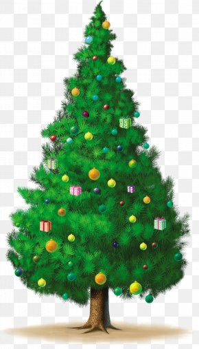 Christmas Tree - Christmas Tree Christmas Ornament New Year Tree Advent Calendars PNG