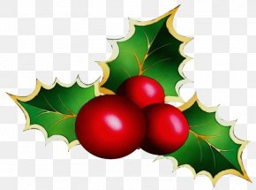 Currant Fruit - Christmas Tree Watercolor PNG