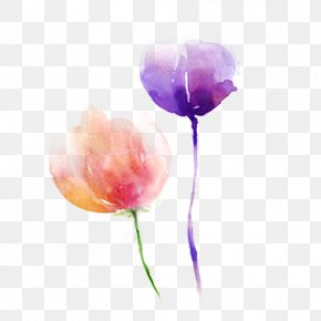 Purple Flower Pink Flower - Pink Flower Purple Tulip PNG