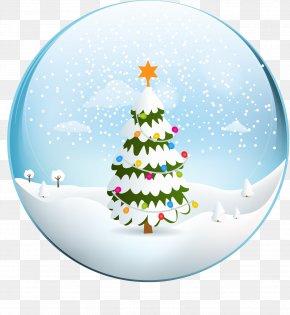 Vector Christmas Tree - Christmas Tree Euclidean Vector PNG